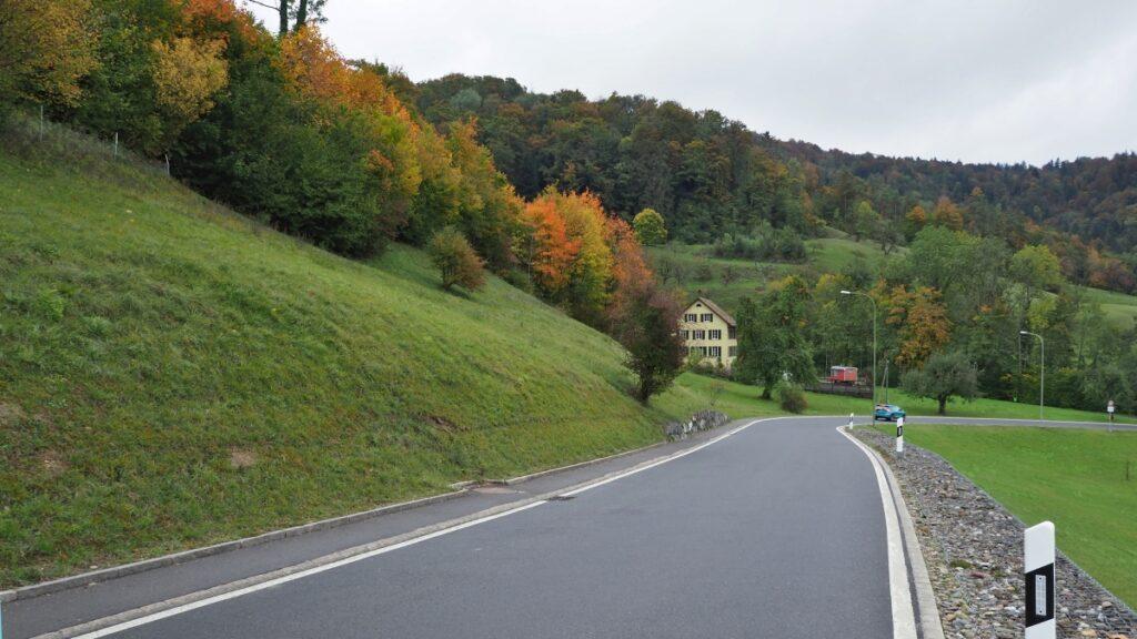 Straße zum Buchenegg mit Herbstbäumen