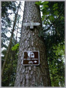 """Fichtenstamm von unten gesehn mit Schild """"Dt. Limes-Radweg"""" und verwittertes Schild """"Phahlbronn"""""""