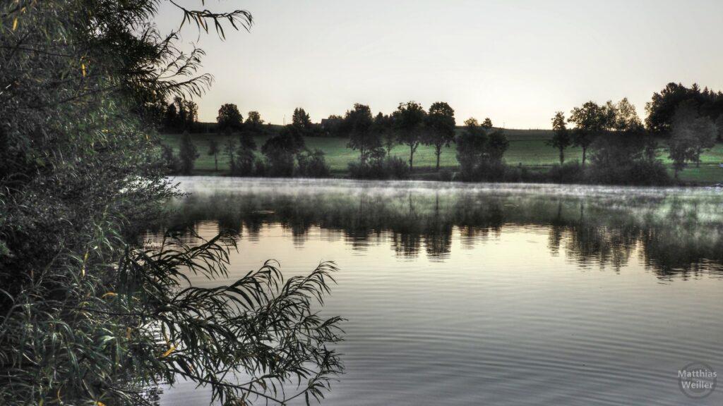 Fabrreduziertes Bild von Seefläcje mit Nebel darüber und Uferhintergrund, Busch ins Bild drängend