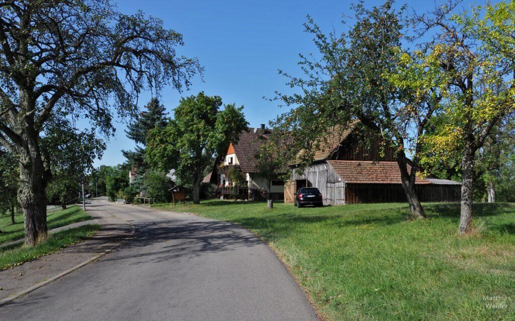 Streuobstwiese mit Straße, Bauernschuppen, Haus, Auto