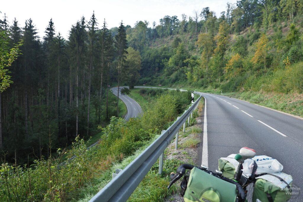 Lange Serpentine mit gelichtetem Wald