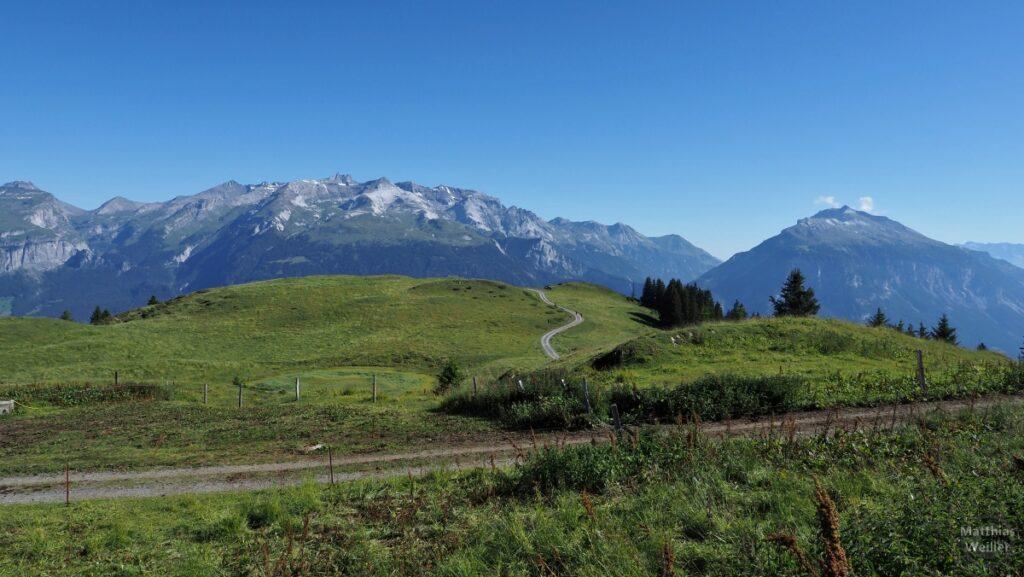 Weitblick über Bergweide, geschlängelte Piste, Glarner Alpenkette