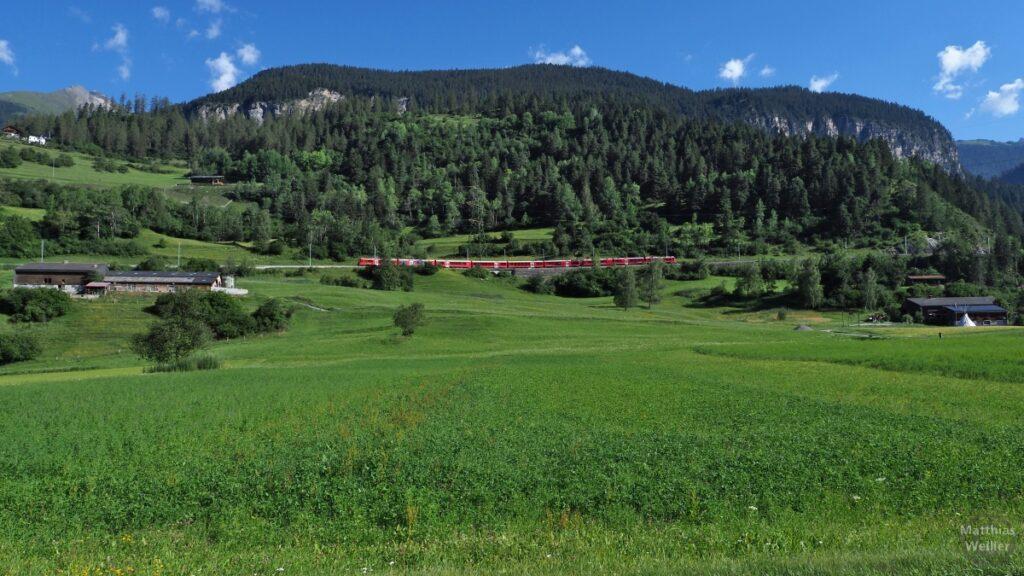 Blick über grüne Wiese auf Berghorizont mit rotem Zug