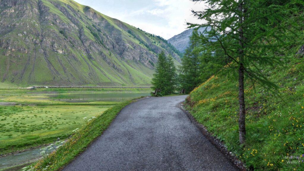 Fahrweg am Livigno-See mit grüner Seewiese, und Fahrgalerien auf der Gegenseite
