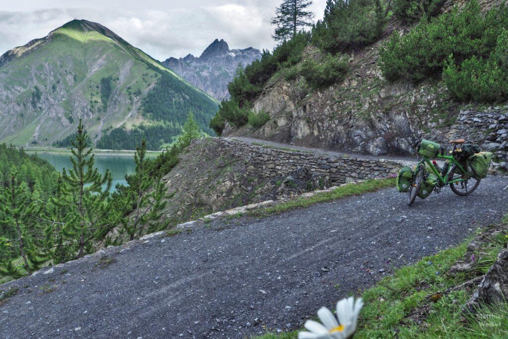 Grüens Resievelo auf Piste vor Livigno-Stausee und Bergkulisse