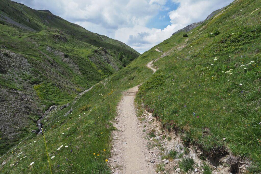 Trail zum Passo Trela