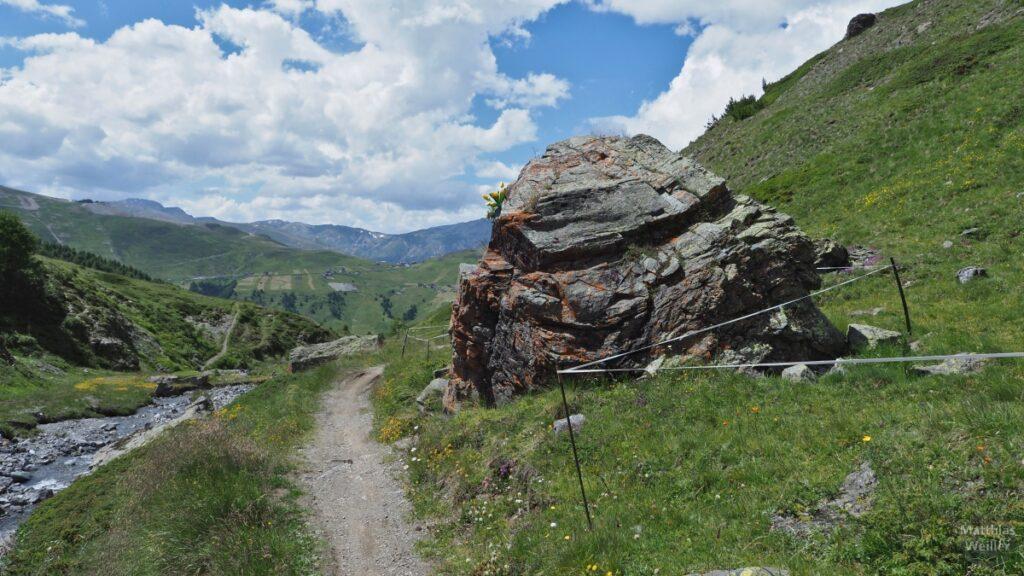 Felsbrocken neben Trail und Bergbach