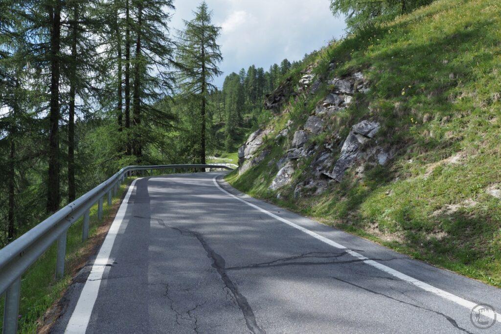 Straßenkurve mit Fels und Lärchenhainen