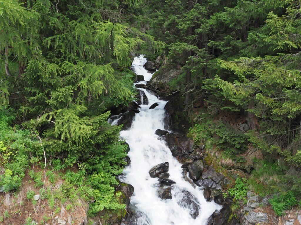 Wasserfall zwischen Grünwald