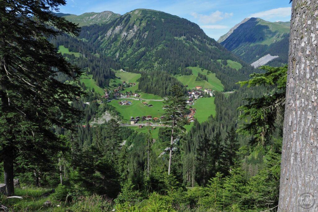 Blick ins Plessurtal mit Bergdorf, grünen Bergwiesen und grünen Bergen