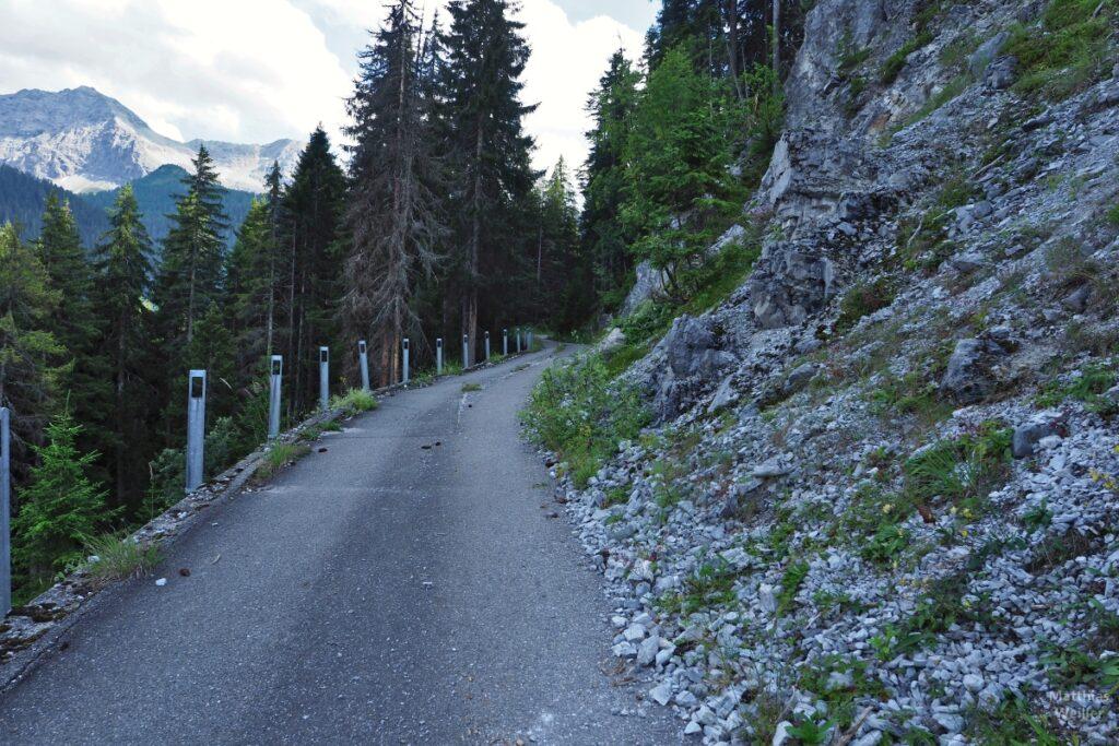 Fahrweg mit bröckelndem Randgestein, Fichtenwald, Bergkulisse