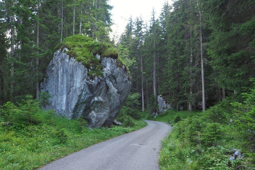 Fahrweg mit Blockstein und Fichtenwald