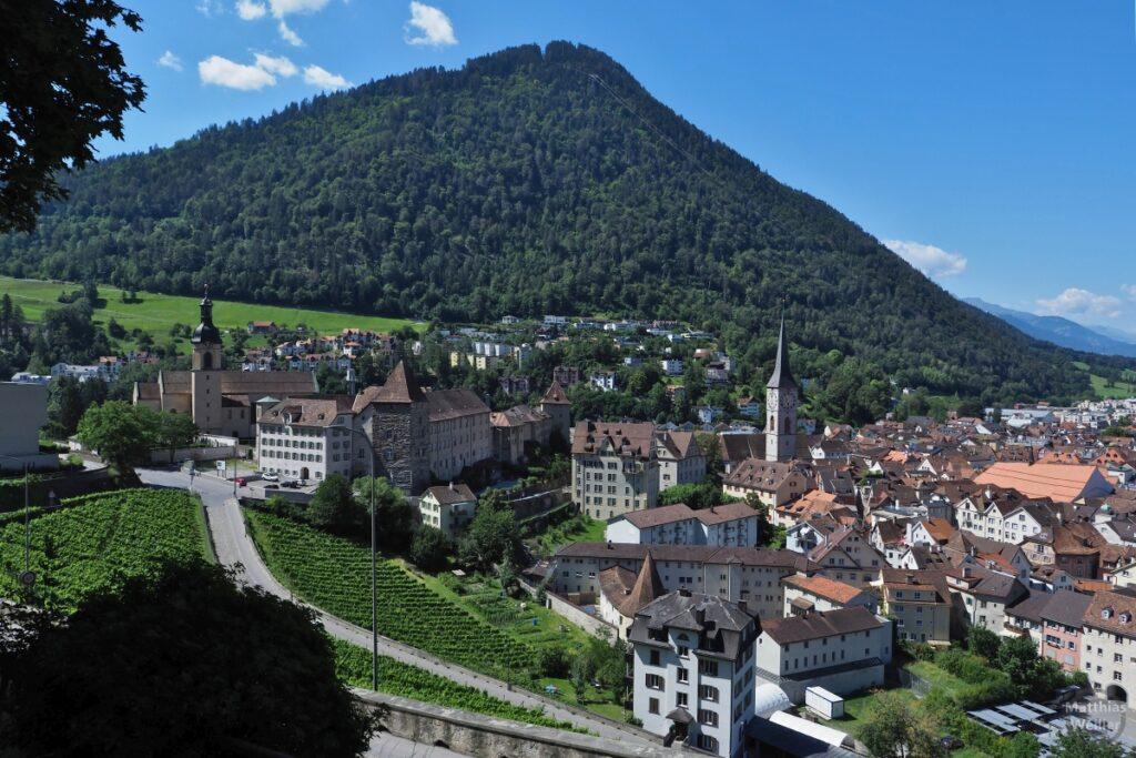 Blick auf Chur mit Altstadt und Weinberg