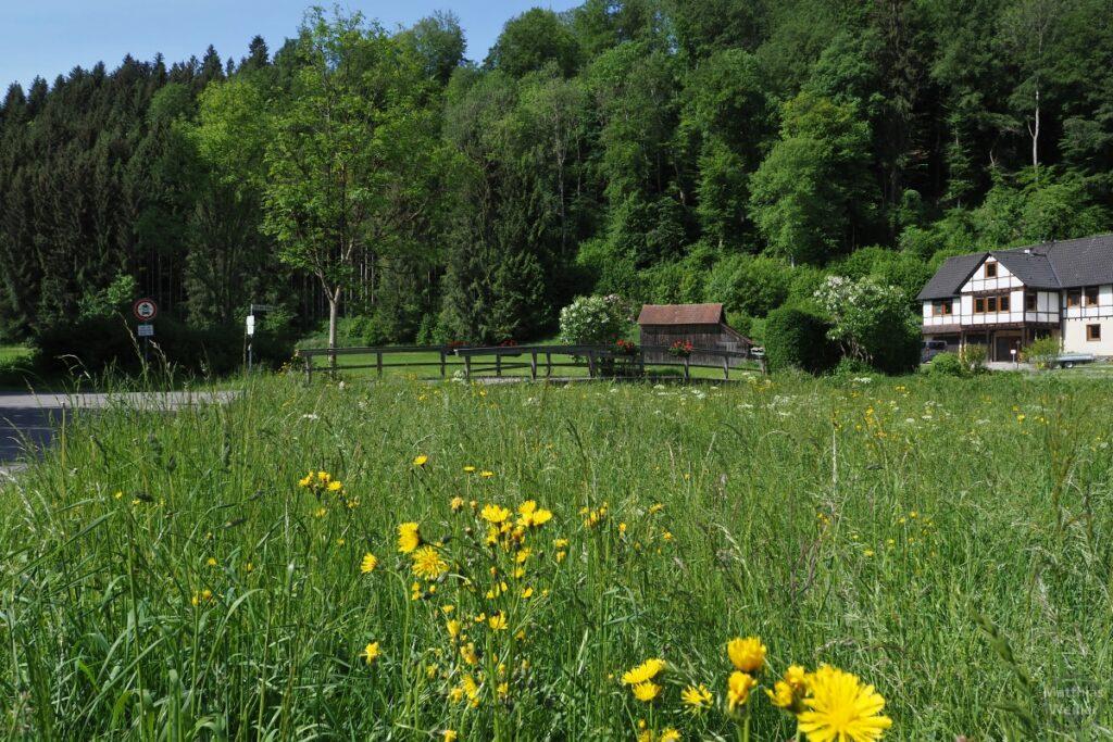 Brücke mit Holzgelaänder, Wiese mit Löwenzahn, Haus, Hütte