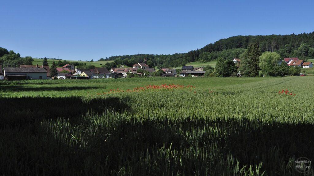 Dorfblick über grünes Feld mit Klatschmohn