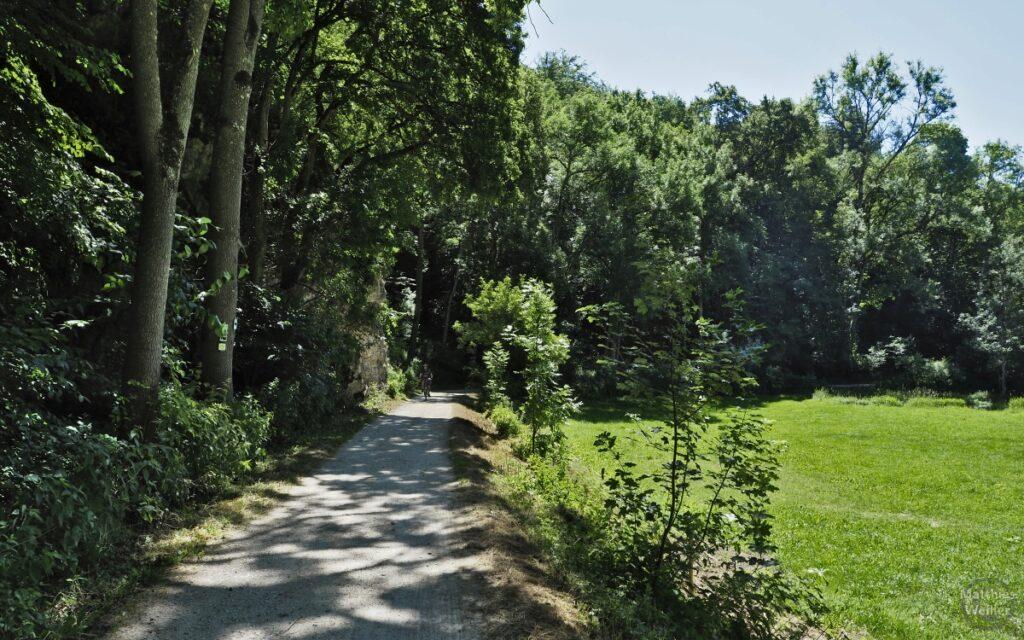 Fahrweg mit Radler Wald/Fels links, Wiese rechts