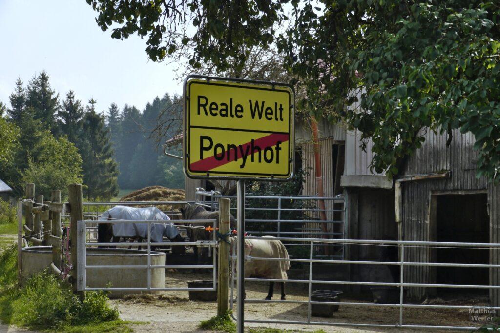 Schild Reale Welt/Ponyhof (Ende) mit Stallung und Pferden dahinter