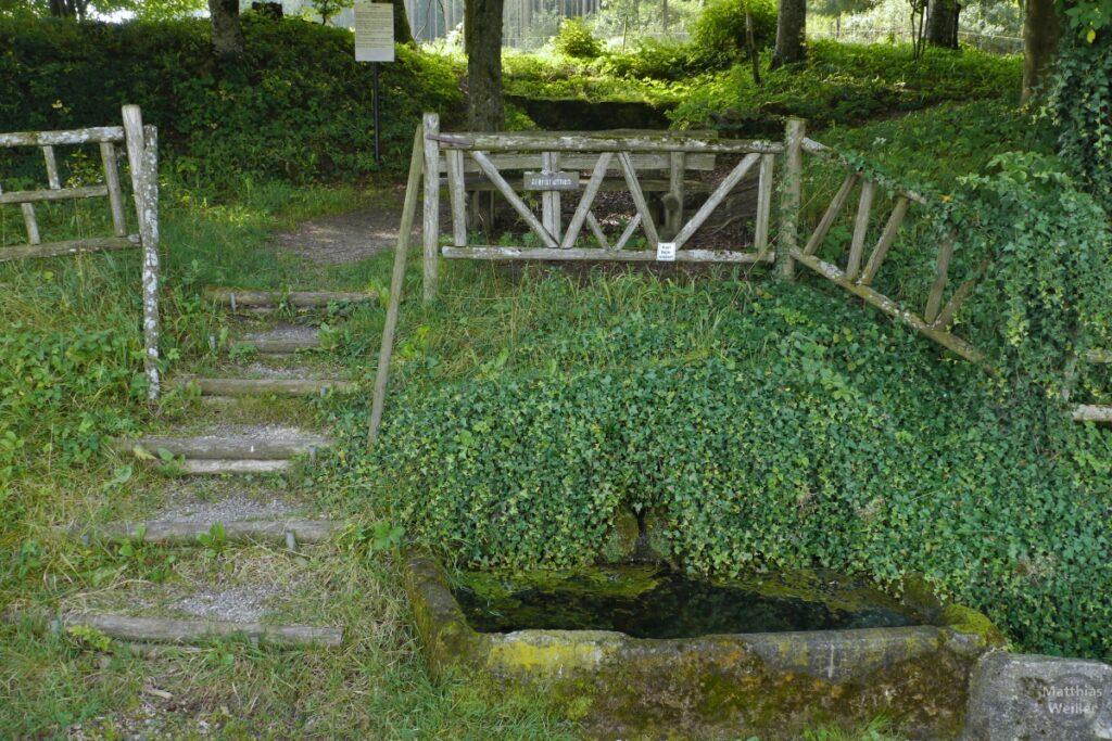 Alenbrunnen mit Steinwanne, Efeu und Holzgitter