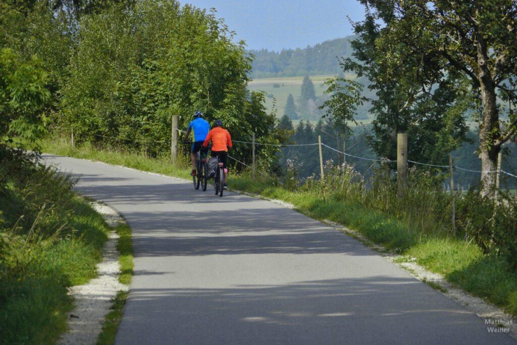 Asphaltierter Fahrweg mit Radlerpaar blau/orange