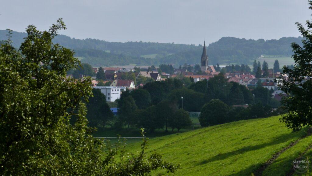 Münsingen mit Kirchturm in Talmulde