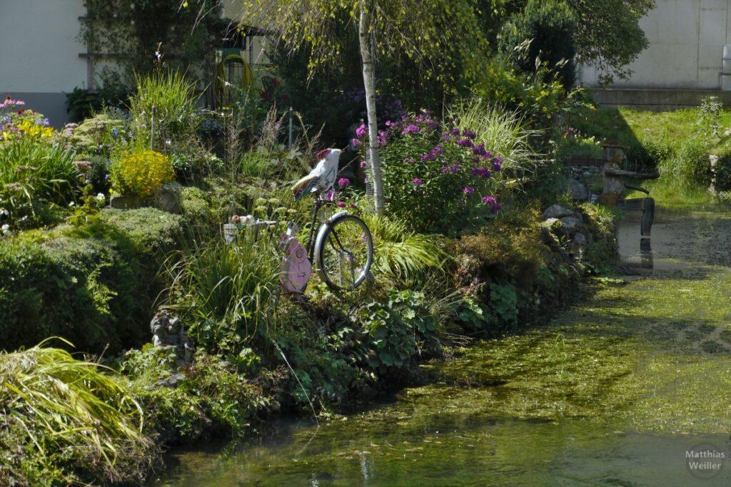 Fahhrad als Skulptur in Gartenteichatmosphäre der Lauter