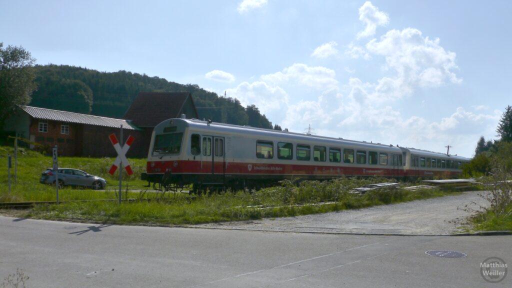 Albbahn-Triebwagen gelb/rot an Bahnübergang