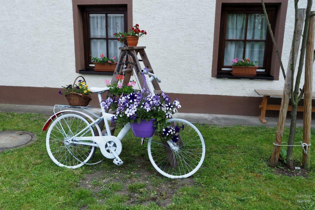 Ausrangiertes Velo weiß mit Blumen weiß/violett vor Hauswand mit Fenstern