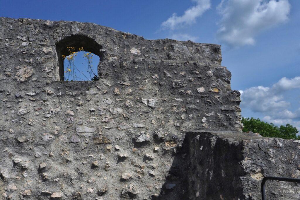 Burgwand der Ruine Burg Derneck mit Blumen in Fensterloch