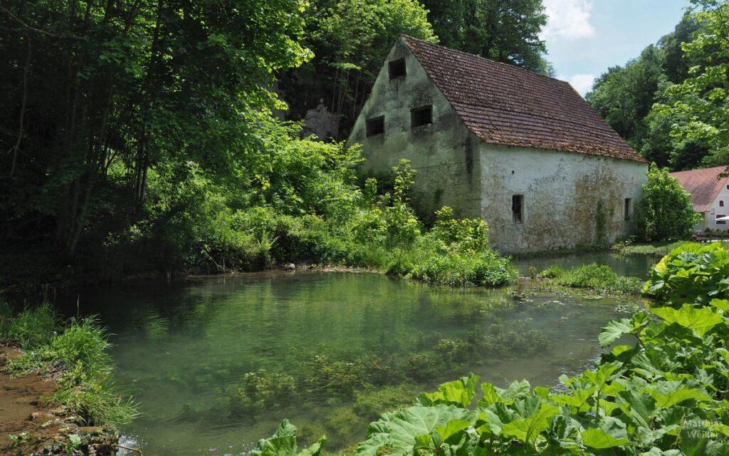 Quellteich mit verfallenem Haus bei Wimsener Höhle