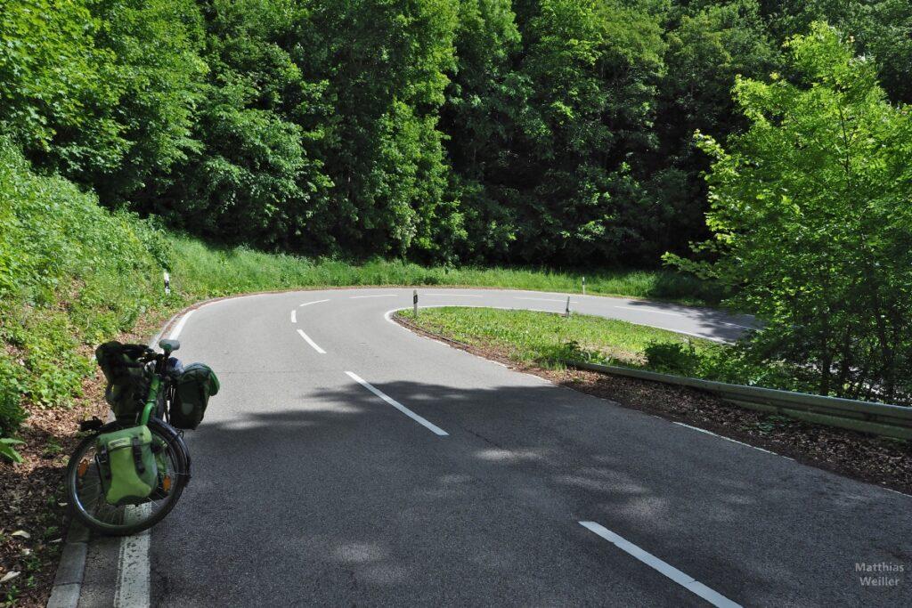 Straßenkehre mit Wald, grünes Reisevelo