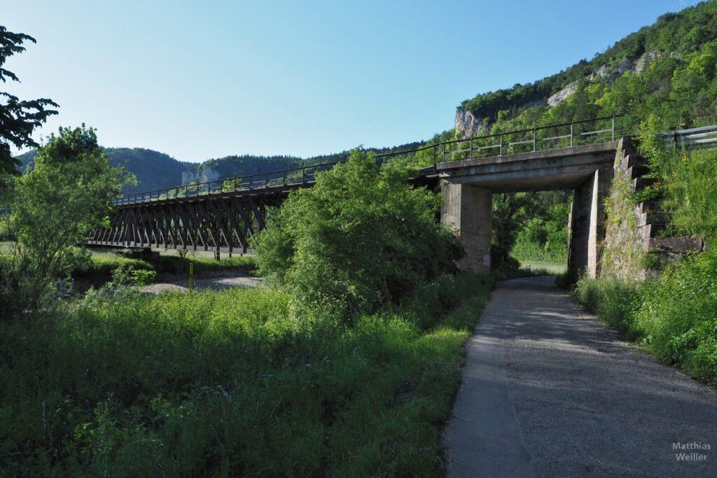 Gekreuzte Stahlstreben-Eisenbahnbrücke über Donau, mit Donauradweg-Unterführung