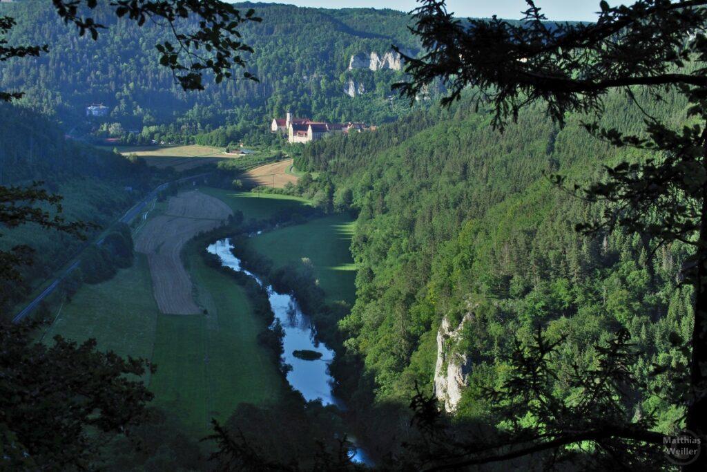 Donau-Mäander mit Kloster Beuron im Hintergrund, von Knopfmacherfelsen betrachtet