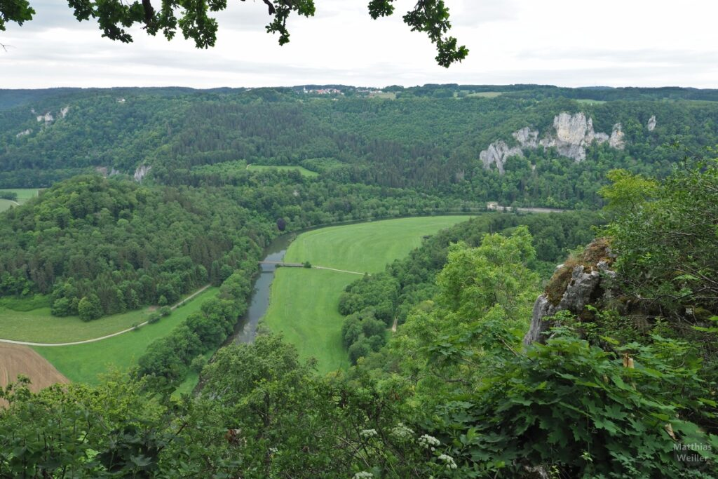 Donauschleife mit Wiesenaue von oben