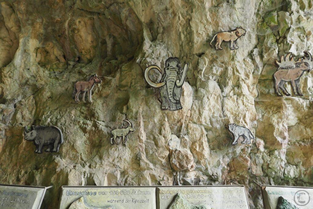 Höhlenwand mit Darstellungen frühzeitlicher Tiere