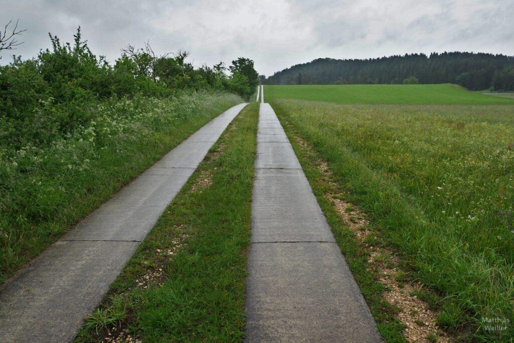 Flucht vom welligen Radweg mit Doppelspurbeton durch Wiesenland