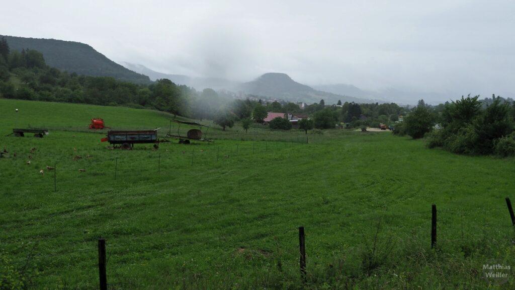 Achalm-Kuppe in Regenwolken über Weide betrachtet